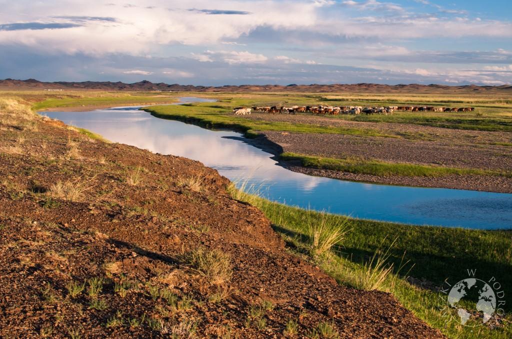 Pastwisko i rzeka płynąca przez step, Mongolia