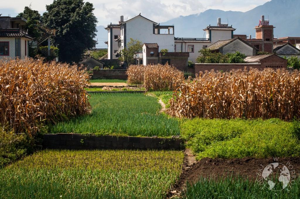 Wioski wokół Dali, Chiny