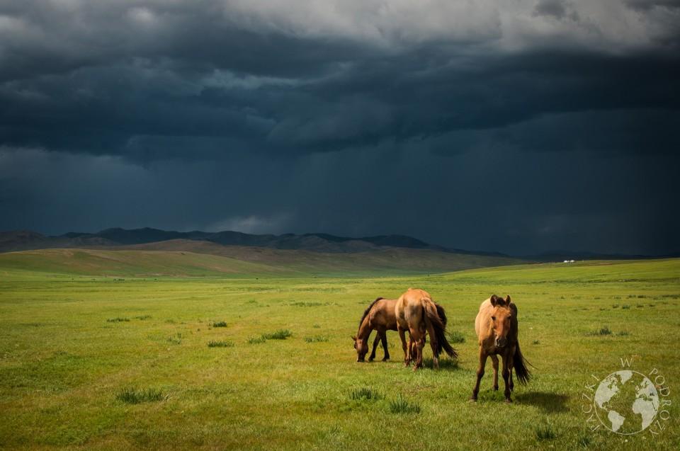 mongolia centralna-6